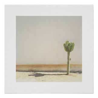 Cactus Photo Art Print
