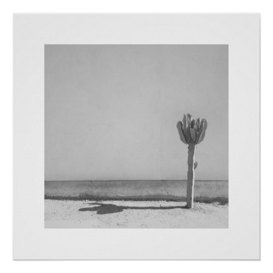 Cactus Photo Art Print - Black & White