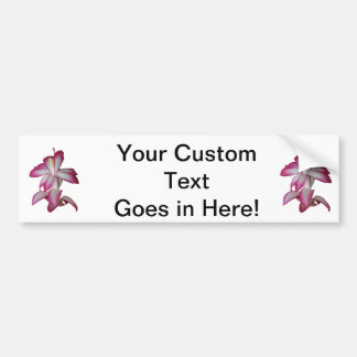 Cactus pink and white flower, succulent bloom bumper stickers