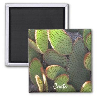 Cactus Plant Square Magnet