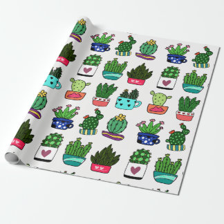 Cactus plants in colorful pot wrapping paper