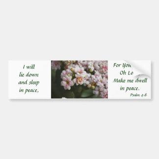 Cactus Rose Car Bumper Sticker