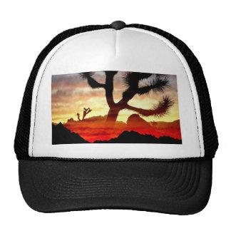 cactus vision cap