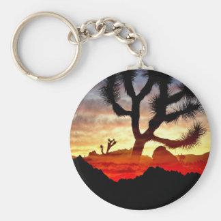 cactus vision key ring