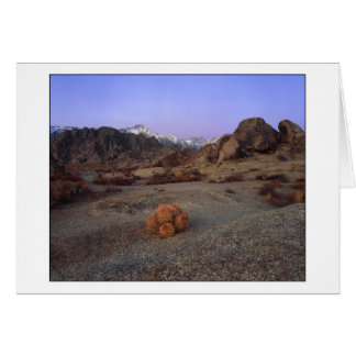 """Cactus With A View"" - Wide Angle Note Card"