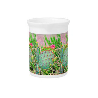 Cactus with Pink Flower Porcelain Pitcher