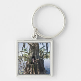 Caddo Lake, hunting blind Silver-Colored Square Key Ring