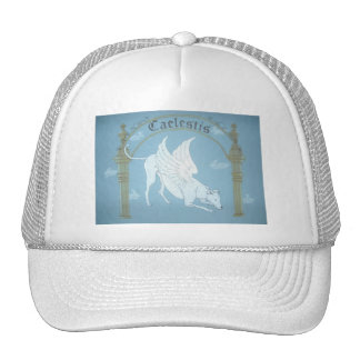 "Caelestis ""Hound of Heaven"" hat"