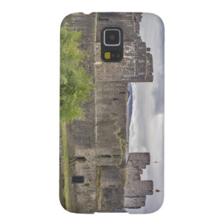 Caerphilly Castle Galaxy S5 Covers
