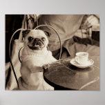 Cafe Pug Poster