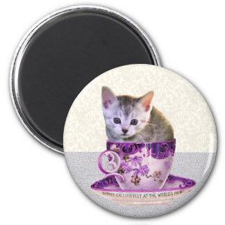 caffeine cat magnet