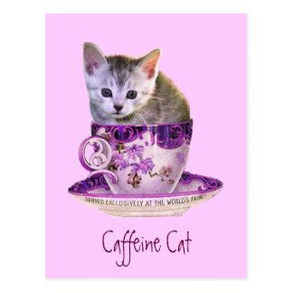 Caffeine Cat postcard