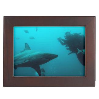 Cage Diving With Blacktip Sharks Keepsake Box