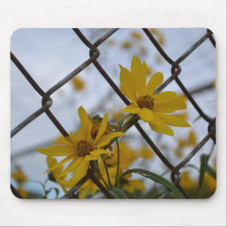 Caged Beauty Mouse Mat