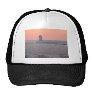 Caged in Ice Mesh Hat