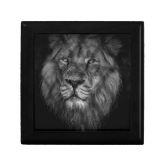 Caged king small square gift box
