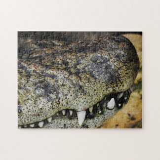 Caiman 01 Digital Art - Photo Puzzle