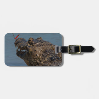 Caiman with a butterfly, Brazil Luggage Tag