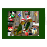 Caique Christmas Greetings Cards