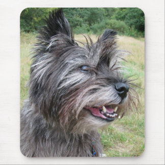 Cairn Terrier dog mousepad, gift idea Mouse Mat