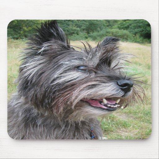 Cairn Terrier dog mousepad, gift idea