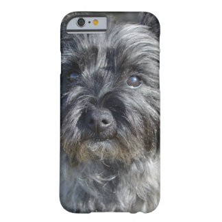 Cairn Terrier Face Barely There iPhone 6 Case