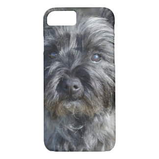Cairn Terrier Face iPhone 7 Case