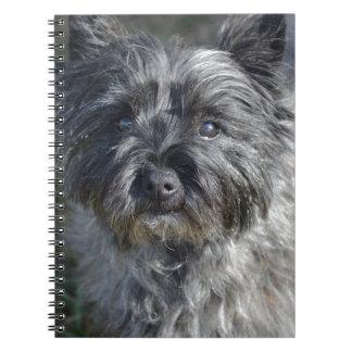 Cairn Terrier Face Notebook
