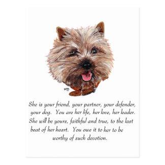 Cairn Terrier Keepsake - FEMALE Postcard