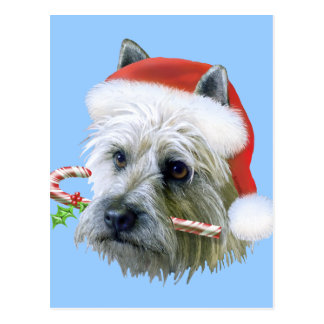Cairn Terrier Postcards