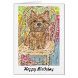 Cairn Terrier sitting in garden birthday card