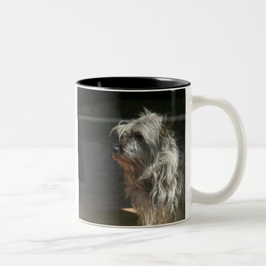 cairn terrier Two-Tone coffee mug