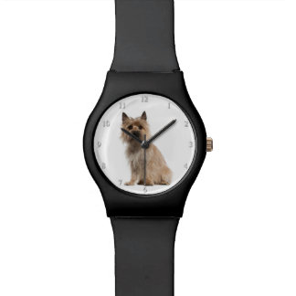 Cairn Terrier Watch