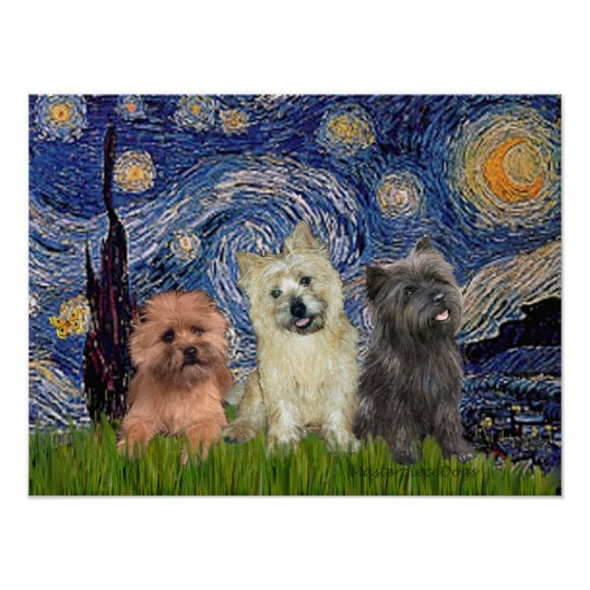 Cairn Terriers (three) - Starry Night Poster