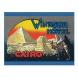 Cairo Egypt Vintage Travel Postcard