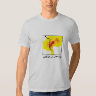 Cairo Infrastructure growth T Shirts