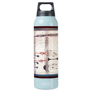 Cajal Insulated Water Bottle