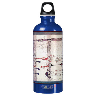 Cajal Water Bottle