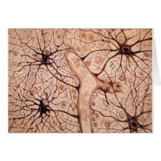 Cajal's Neurons 3 Card
