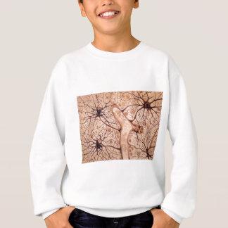 Cajal's Neurons 3 Sweatshirt