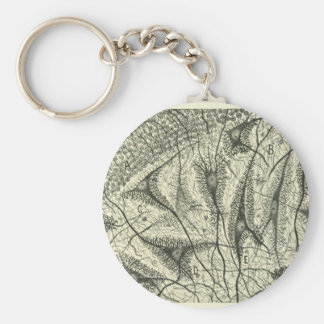 Cajal's Neurons 4 Basic Round Button Key Ring