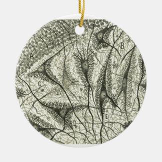 Cajal's Neurons 4 Christmas Ornament
