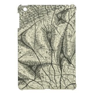 Cajal's Neurons 4 iPad Mini Cover