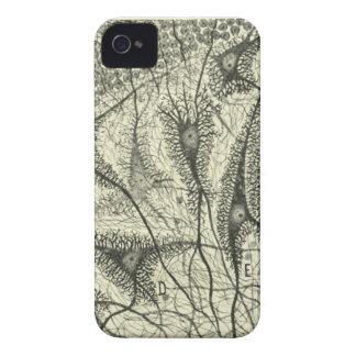 Cajal's Neurons 4 iPhone 4 Case-Mate Cases
