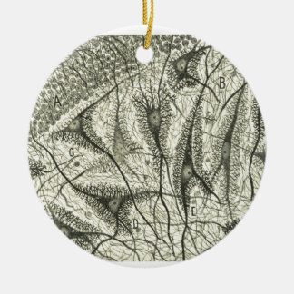 Cajal's Neurons 4 Round Ceramic Decoration