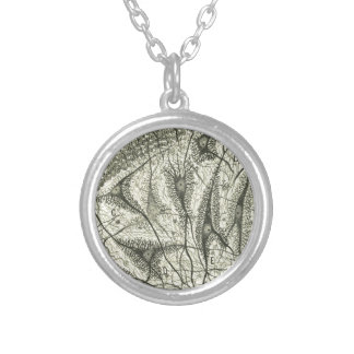 Cajal's Neurons 4 Silver Plated Necklace