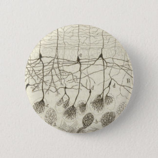 Cajal's Neurons 8 6 Cm Round Badge