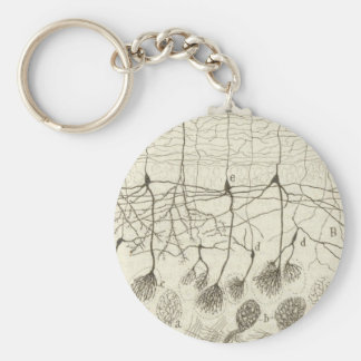 Cajal's Neurons 8 Basic Round Button Key Ring