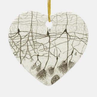 Cajal's Neurons 8 Christmas Ornament