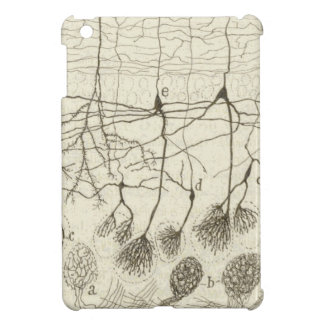 Cajal's Neurons 8 Cover For The iPad Mini